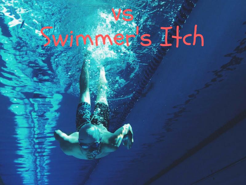 Chlorine Rash vs Swimmer's Itch